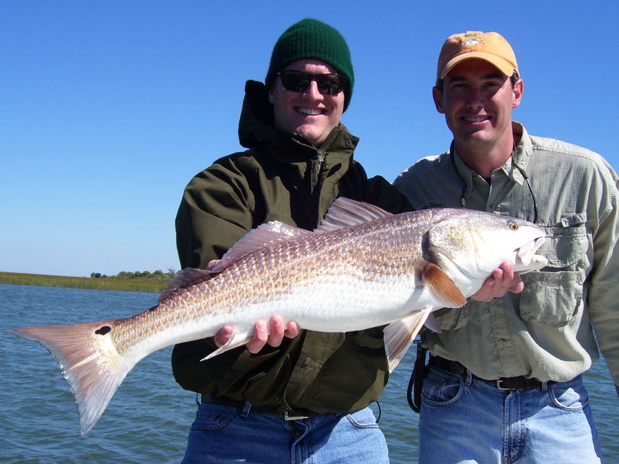 Hammer Jack Fish | Shorethangcharters With Capt Mark Phelps In Shore Saltwater Fishing